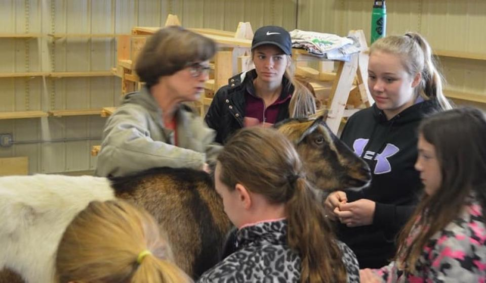 4-H Educational Day at the Alexandria Fairgrounds