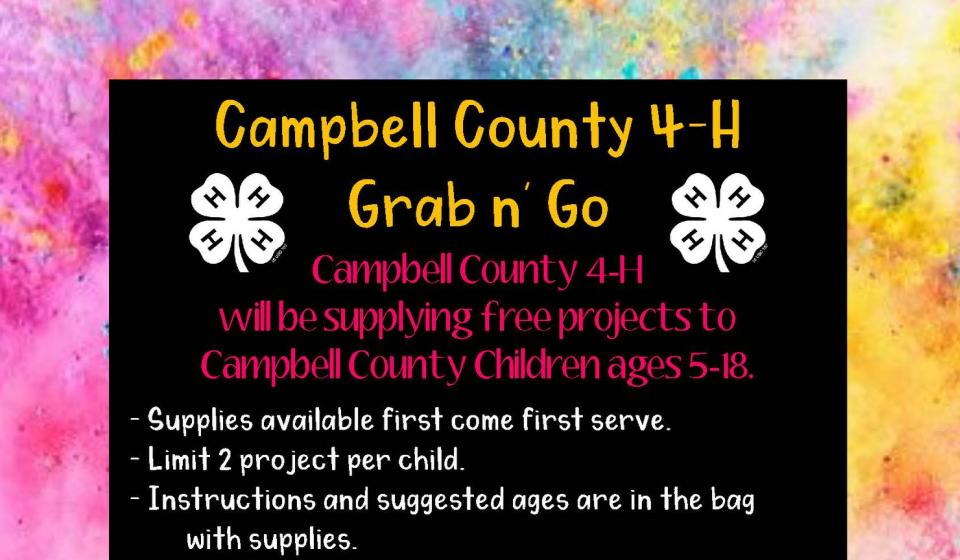 4-H Grab and Go Projects